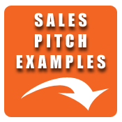 Good Sales Pitch Examples